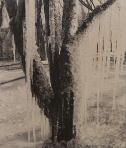 LAURA GILPIN, ICICLES