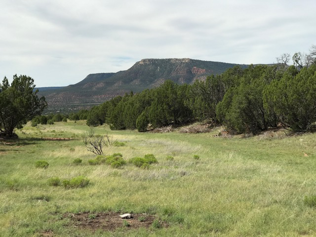 RDR - CANYON SITE AND VIEW OF GLORIETA MESA