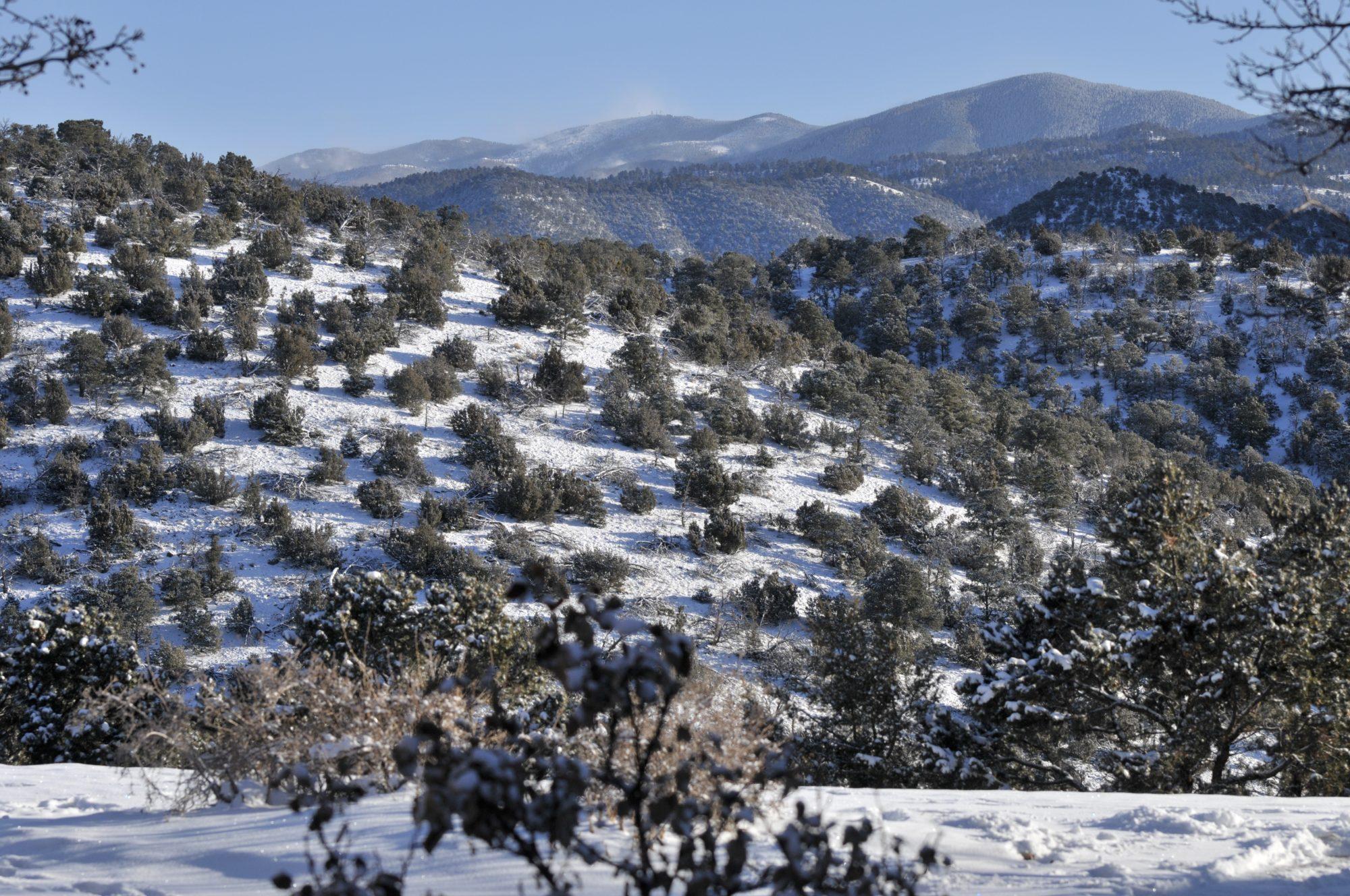 5 SHERWOOD SNOW VIEW LOOKING EAST
