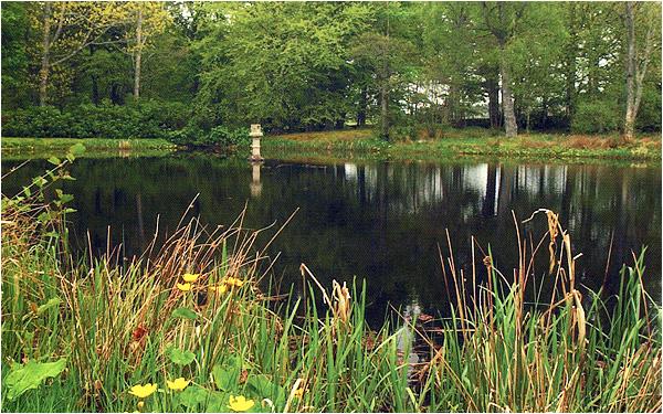 gledfield-lake